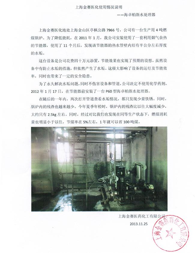 上海金赛化工煤锅炉2